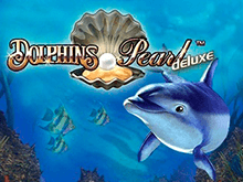 Dolphin's Pearl Deluxe в игровых аппаратах Вулкана 24