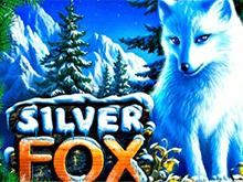 Демо без СМС в Вулкане Делюкс – Silver Fox