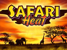 Safari Heat от Вулкана Делюкс