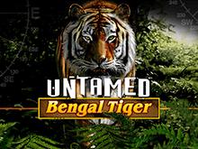Играть на деньги в Неукротимый Бенгальский Тигр
