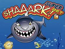 Играть в интернет клубе в автомат Shaaark Superbet