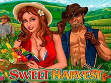 Игровой автомат Богатый Урожай в режиме онлайн с бонусами