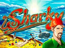 Слот Sharky в игровом клубе