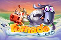Играть на деньги в Торнадо: Побег Из Фермы