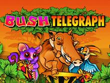 На зеркале сайта Вулкан виртуальная игра Лесной Телеграф